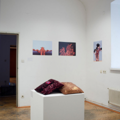 ppo_02_150327_exhibition_fohler_06